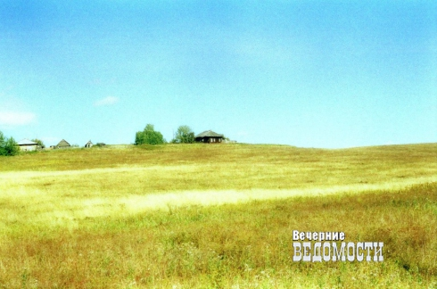Свердловские поля могут зарасти сорняками?