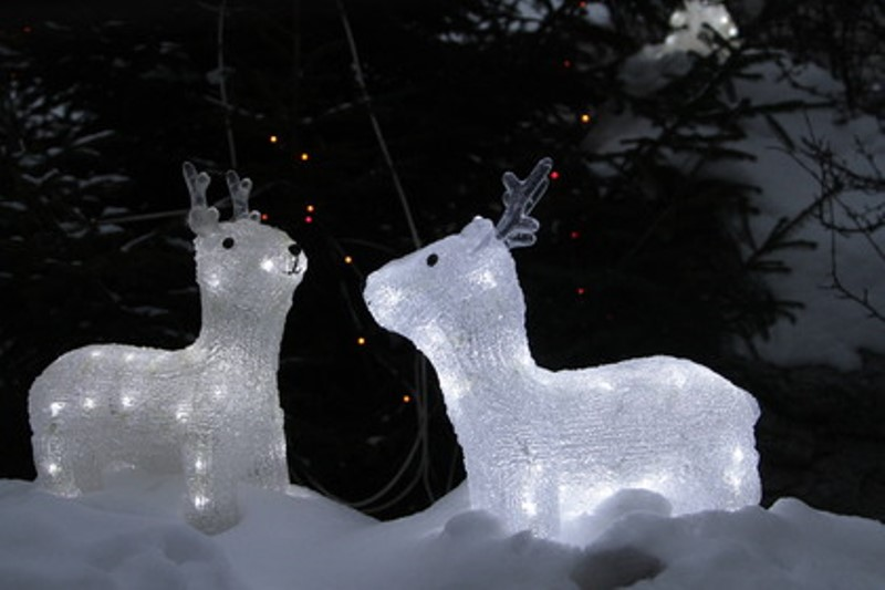 Свой ледовый городок появился в Екатеринбургском зоопарке